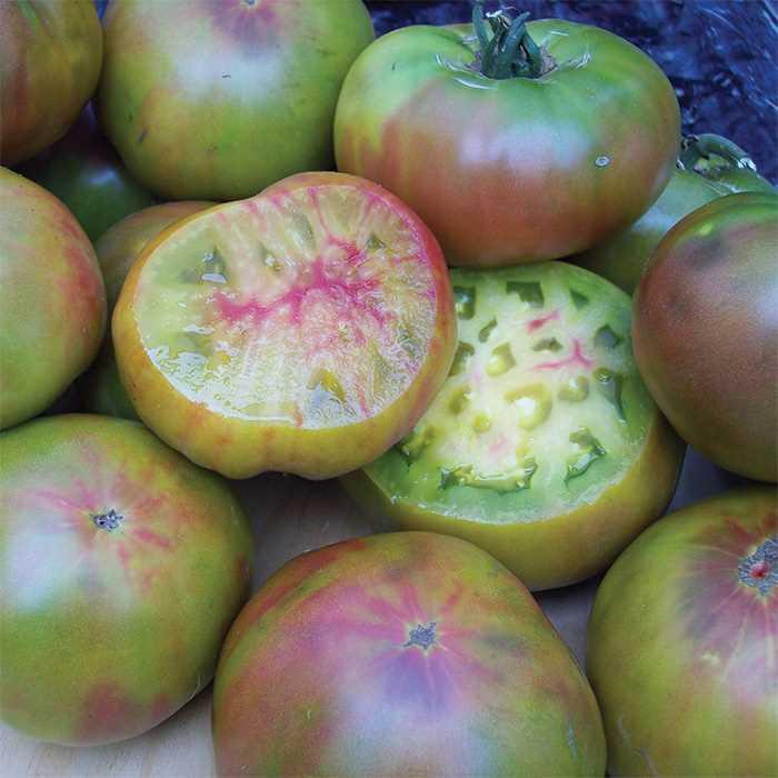 "Tomato 'Ananas Noire""-0"