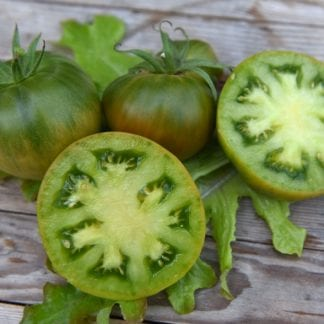 Tomato 'Aunt Ruby's German Green'-0
