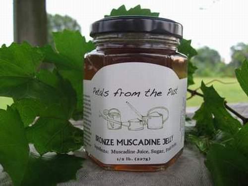 Bronze Muscadine Jelly-1172