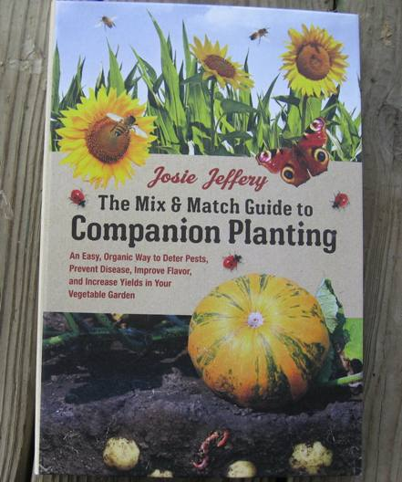 Mix and Match Guide to Companion Planting-0