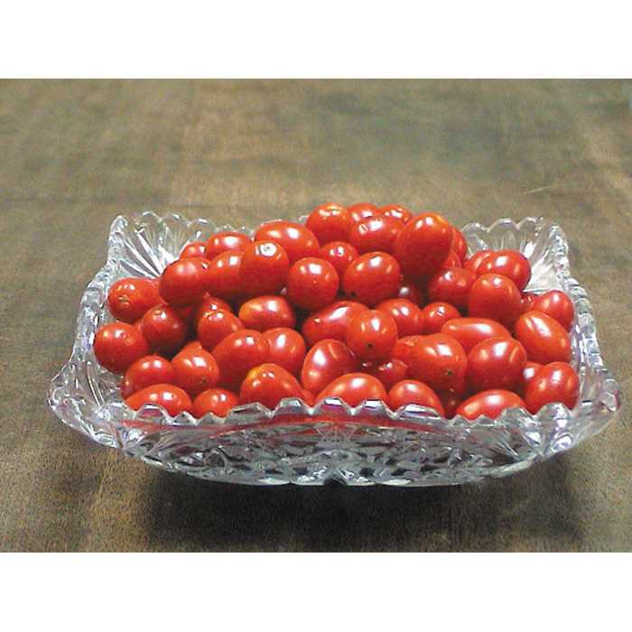 Tomato 'Jelly Bean Red'-0