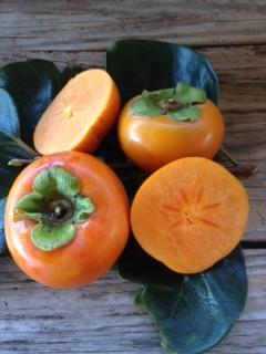 Fuyu Persimmons, Fresh Fruit-1671