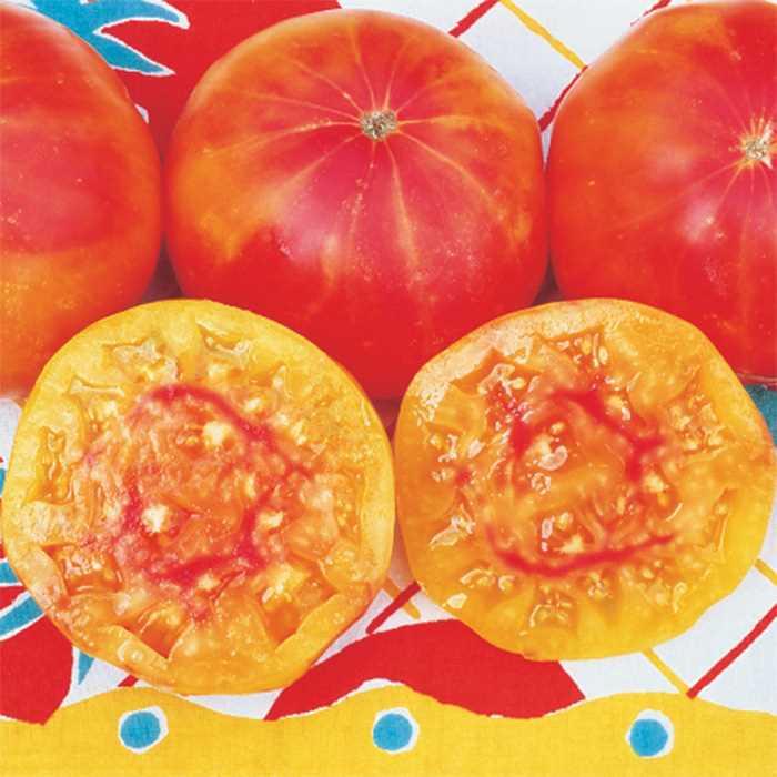 Tomato 'Pineapple'-0