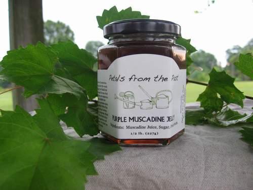 Purple Muscadine Jelly-1174