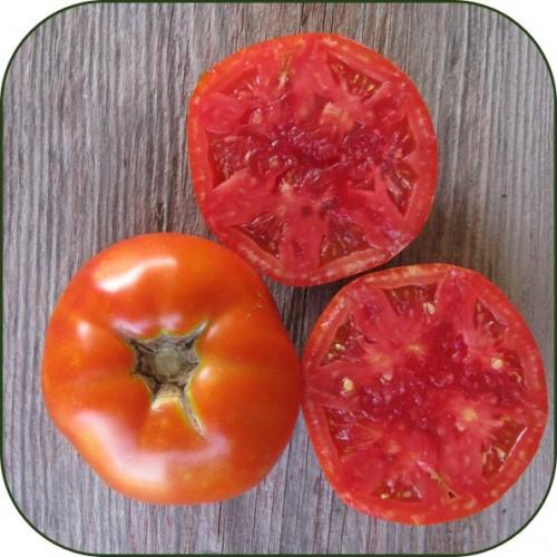 Tomato 'Rutgers'-0
