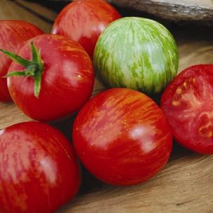 Tomato 'Sweet Carneros Pink'-0