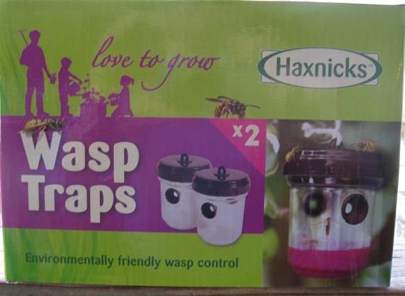 Wasp Traps-0